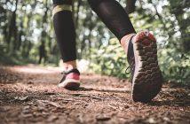 Nova tekaška sezona