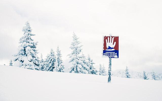 Verjetnost snežnega plazu