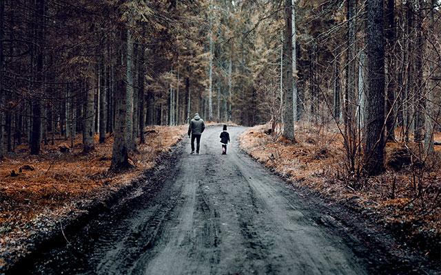 Gozd - pozitivni učinki na zdravje