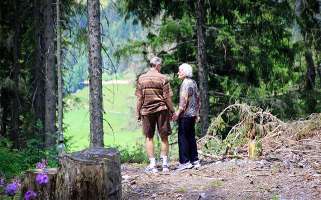 Gozd - zniževanje krvnega tlaka